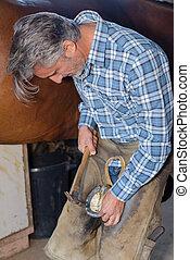 installing the horseshoe on the hoof