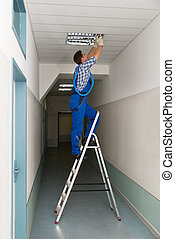installs, iluminación, techo, electricista, stepladder