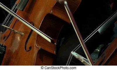 instrument, 2, musical, basse