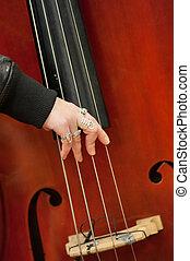 instrument, musikalisk, sträng