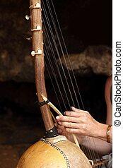 instrumento, étnico, cuerdas, diez, africano