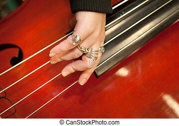 instrumento, musical, cadeia
