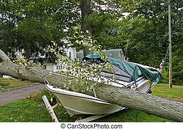 Insurance Claim - Fallen tree crushing a motorboat.