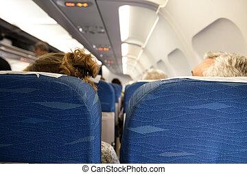intérieur, avion