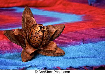 intact skyfruit of mahogany tree on cloth