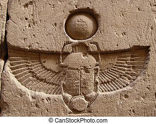 intagliato, scarabeo