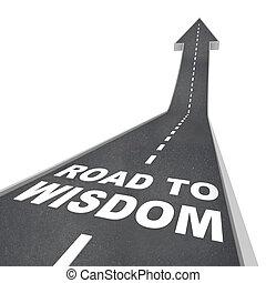 inteligencia, -, sabiduría, direcciones, ilustración, camino