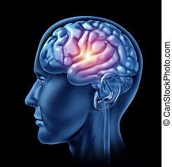 Intelligence Brain Activity - Spark of genius symbol...