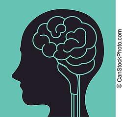 Intelligence of the human brain