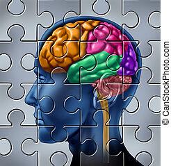 intelligence, puzzle, recherche