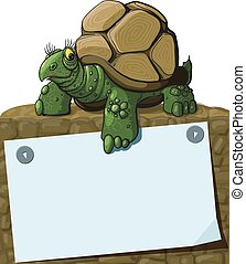 Intelligent Turtle teaches showing paw on sheet with space...