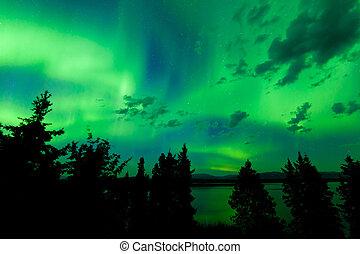 intens, boreal, lichten, op, groene, noordelijk, bos
