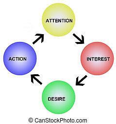 interés, atención, deseo