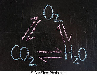 Interaction of oxygen, carbon dioxide and water