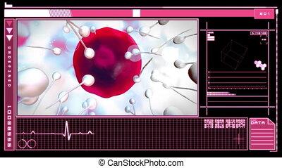 Interface showing fertilisation