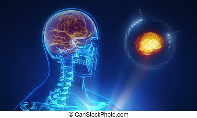 interfejs, mózg, technologia, ludzki