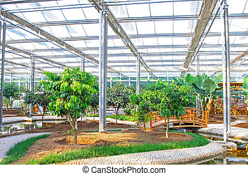 interior architectural landscape in a botanical garden