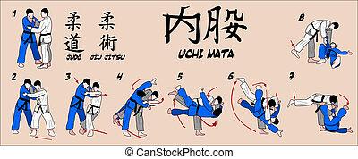 interior, coxa, judo, lançamento, colhendo