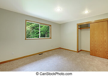 Interior Of Empty Room With Closet Soft Beige Carpet Floor And