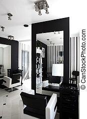 interior of modern beauty salon - black and white interior...