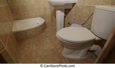 Interior of small bathroom with sink shower and toilet