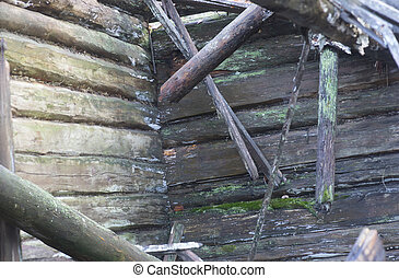 Interior of wooden house falling apart, with logs and fungus