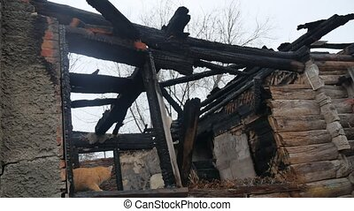 interior old burnt of burned-down wooden house fire after a...