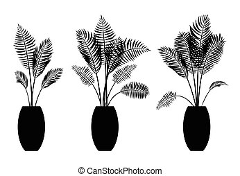 Interior palm trees silhouette on the pot design. decoration...