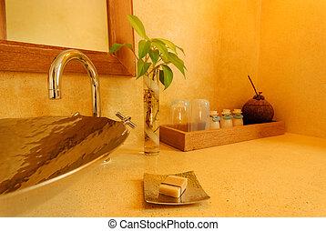 Interior shot of a bath room