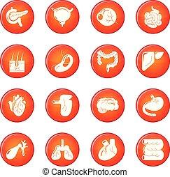Internal human organs icons set red vector