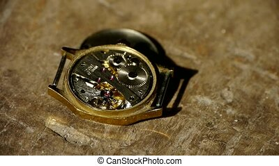 internal structure of Watch,gears.