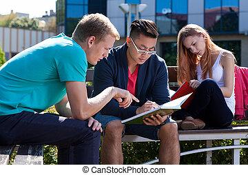 internationaal, scholieren, leren, samen, buiten