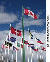 flags - international flags