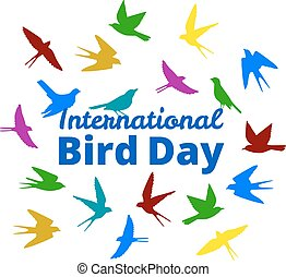 international, oiseau, jour