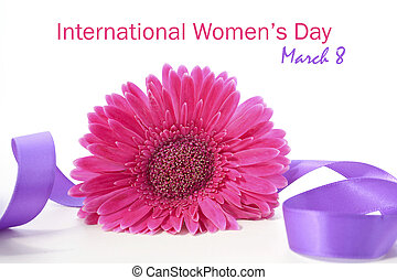 International Womens Day Pink Gerbera with symbolic purple ribbon on white wood table with sample text.