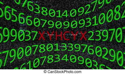 internet, codificazione