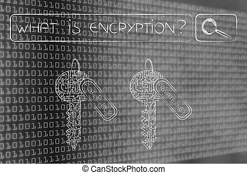 private and public keys under search bar with What is encryption query