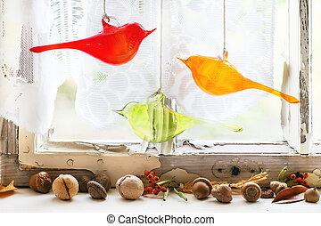interno, finestra vetro, noci, uccelli