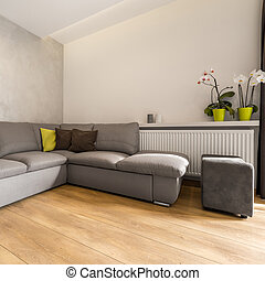 interno, grande, extra, divano