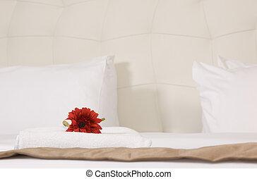 interno, stanza, albergo