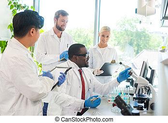 internos, fazer, bacteriologia, estudantes, concept.,...
