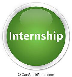 Internship premium soft green round button