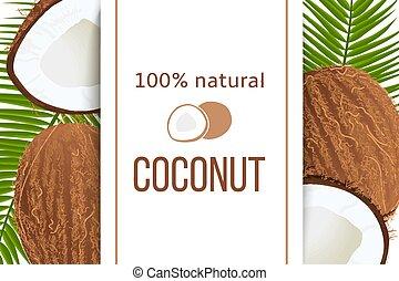 intero, e, fesso, maturo, noci cocco, e, foglie palmo, con,...