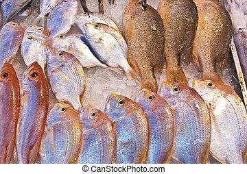 intero, fresco, pesci, ara, offerto, in, il, mercato pesce,...