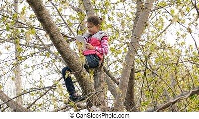 interpretacja, dziewczyna, naście, posiedzenie, drzewo, tabliczka