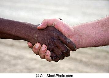 interracial handshake - closeup of a hand shake, interracial...