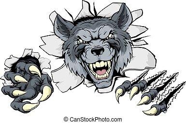 interrupción, garras, lobo, afuera