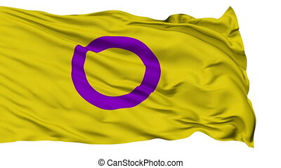 Intersex Close Up Waving Flag - Intersex Flag, Close Up...