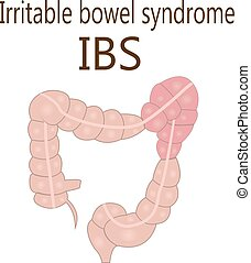 intestino, síndrome, intestino, (ibs), grande, irritável