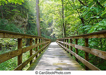 A wooden pathway leading through the woods to Hayden Falls in Columbus, Ohio.